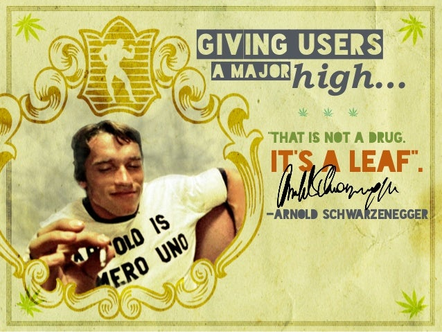 """a major giving users high… -Arnold Schwarzenegger it's a leaf"""". """"that is not a drug."""