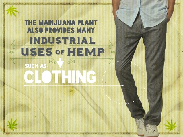 clothing uses hempof industrial the marijuana plant also provides many such as: