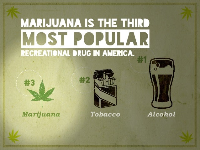 #1 #2 Marijuana is the third most popular recreational drug in America. Marijuana Tobacco Alcohol #3