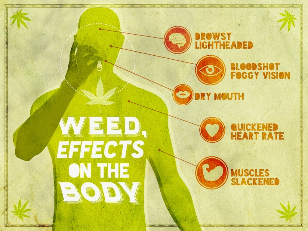 The effects of marijuana consumption on the human body