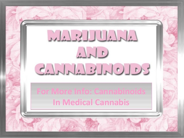 For More Info: CannabinoidsIn Medical CannabisFor More Info: CannabinoidsIn Medical Cannabis