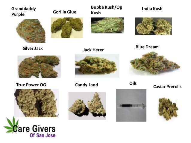 Marijuana Delivery Service - Care Givers of San Jose