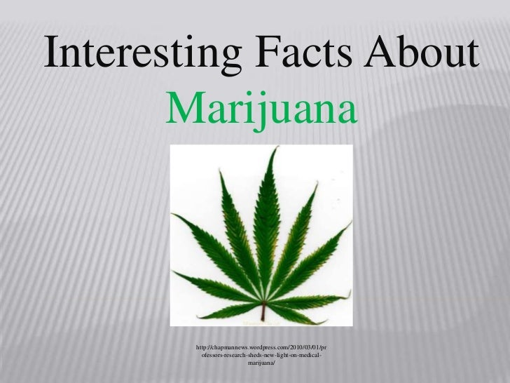 Interesting Facts About Marijuana<br />http://chapmannews.wordpress.com/2010/03/01/professors-research-sheds-new-light-on-...