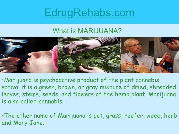 EdrugRehabs.com What is MARIJUANA? <ul><li>Marijuana is psychoactive product of the plant cannabis sativa. it is a green, ...