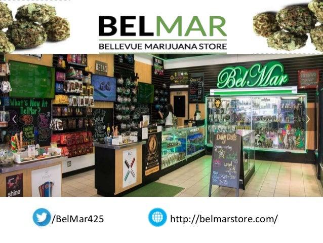 Pet Food Store Bellevue Wa