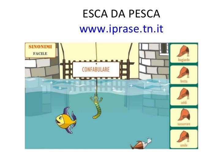 ESCA DA PESCA    www.iprase.tn.it