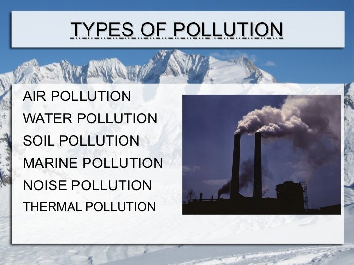 marine pollution 3 essay