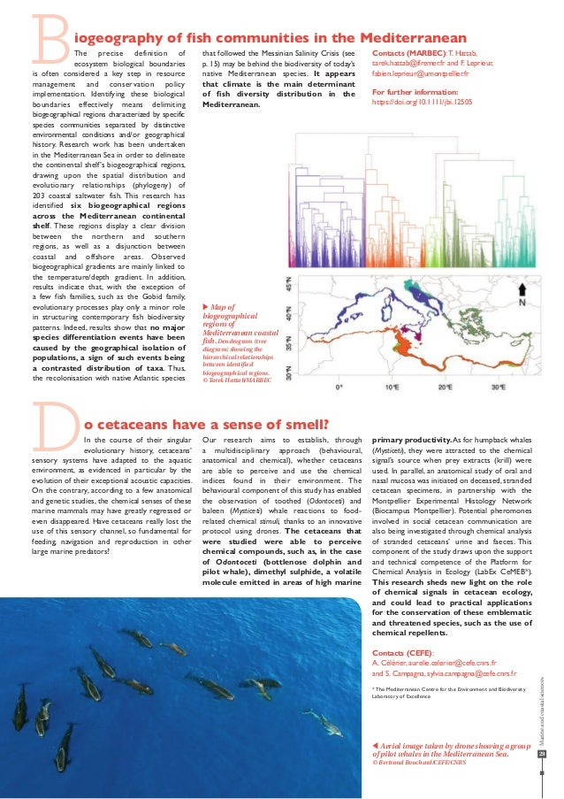 29 Biogeography of fish communities in the Mediterranean The precise definition of ecosystem biological boundaries is ofte...