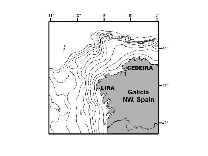 Marine Reserve Galicia (May07) Slide 3