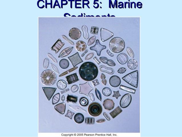 CHAPTER 5: MarineCHAPTER 5: Marine SedimentsSediments