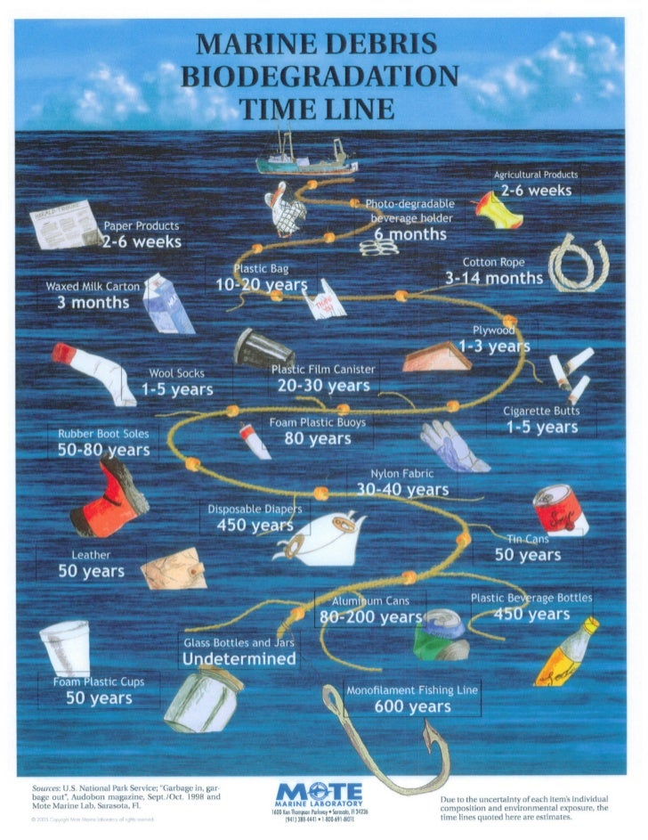 Marine biodegradation timeline