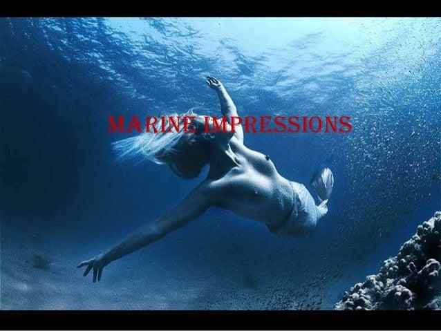 marine impressions