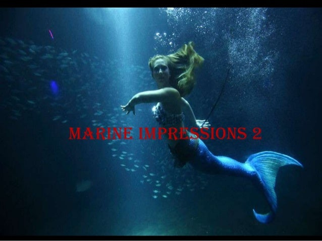 Marine impressions 2
