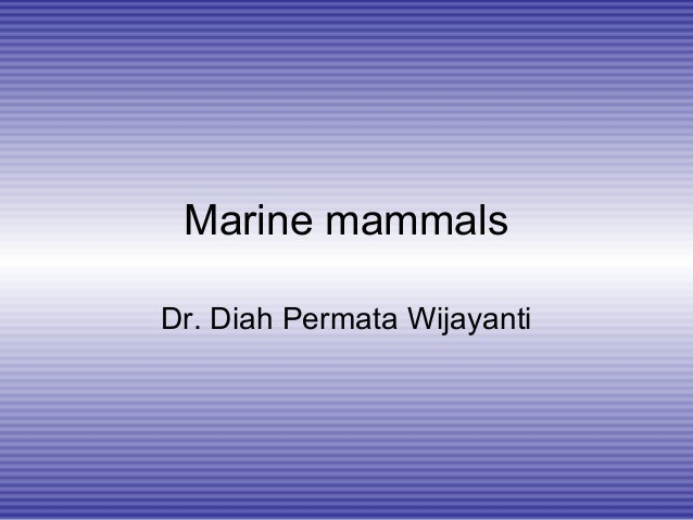 Marine mammals Dr. Diah Permata Wijayanti