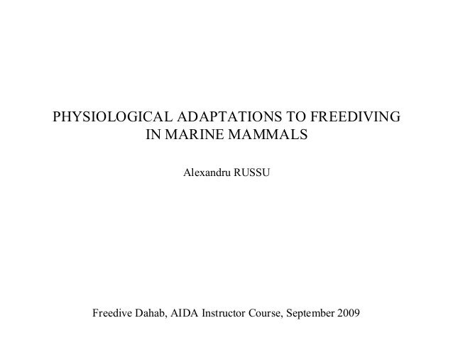 PHYSIOLOGICAL ADAPTATIONS TO FREEDIVING IN MARINE MAMMALS Alexandru RUSSU Freedive Dahab, AIDA Instructor Course, Septembe...