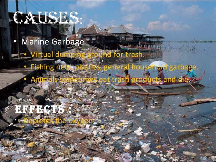 the pollution caused by plastic A useful general overview of marine trash pollution is found here methodology goals components  but wanted to learn more about the sources of plastic pollution.