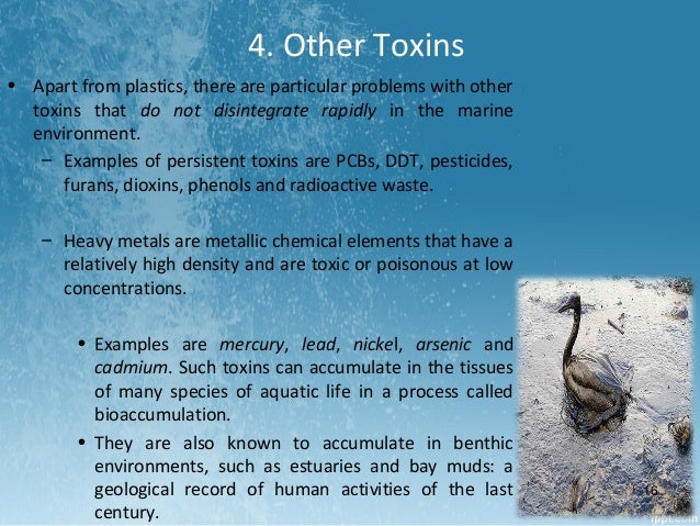oil pollution in marine environment pdf