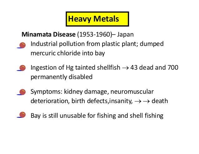 bioaccumulation and biomagnification minamata disease essay
