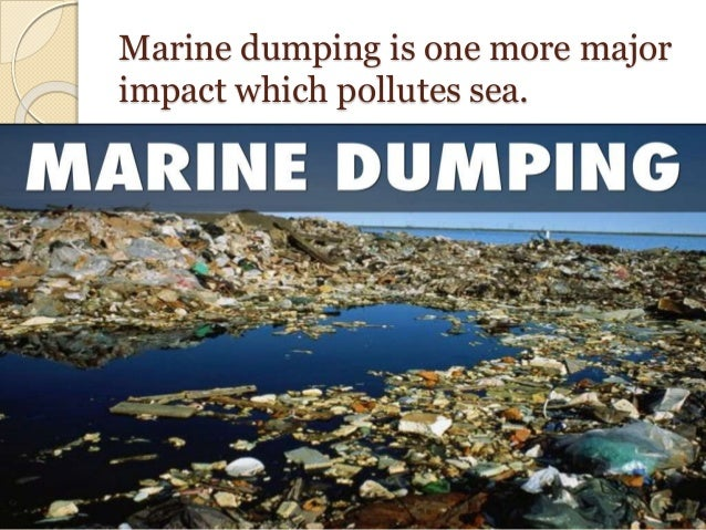 dumping in our waters essay Essay acid rain is a great problem in our world it causes fish and plants to die in our waters as well it causes harm to our own  eight years dumping.