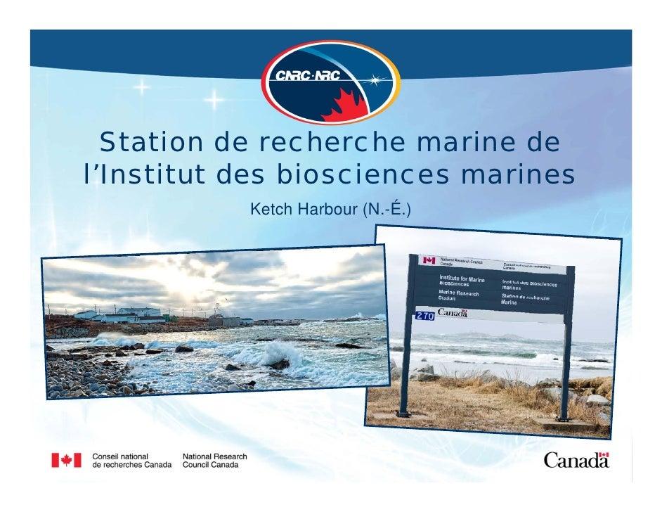 Station de recherche marine de l'Institut des biosciences marines            Ketch Harbour (N.-É.)