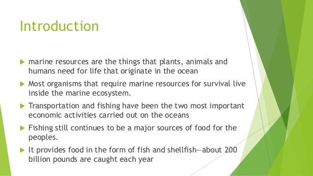 Ppt marine resources in pakistan: powerpoint presentation id.
