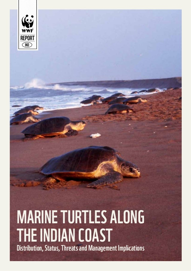 MARINE TURTLES ALONG THE INDIAN COAST Implications Distribution, Status, Threats and Management 1