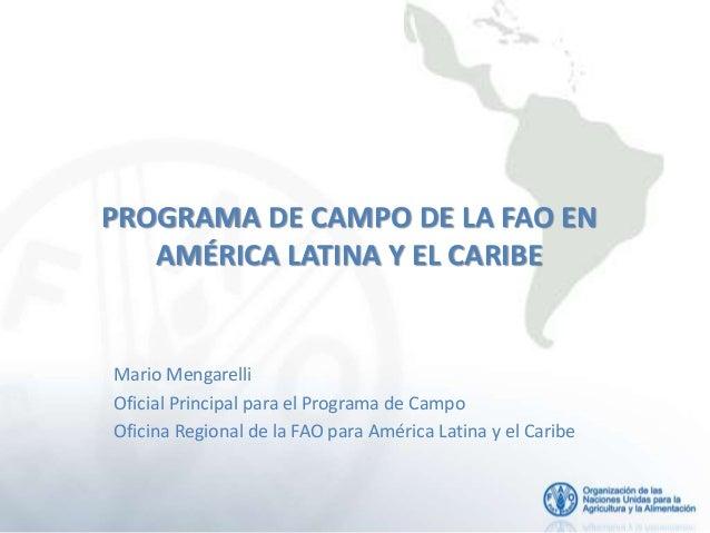 PROGRAMA DE CAMPO DE LA FAO EN AMÉRICA LATINA Y EL CARIBE Mario Mengarelli Oficial Principal para el Programa de Campo Ofi...