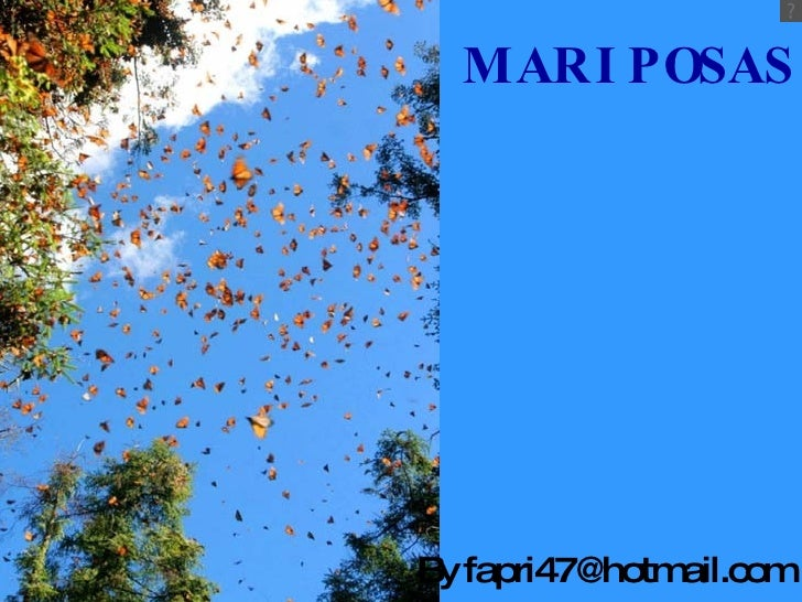 MARIPOSAS By fapri47@hotmail.com