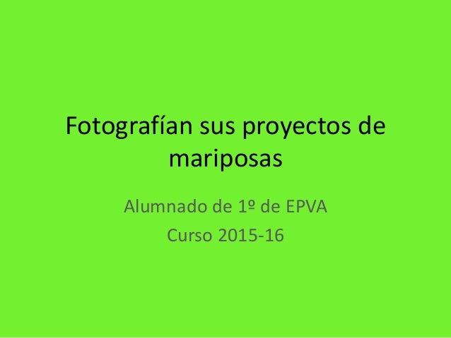 Fotografían sus proyectos de mariposas Alumnado de 1º de EPVA Curso 2015-16