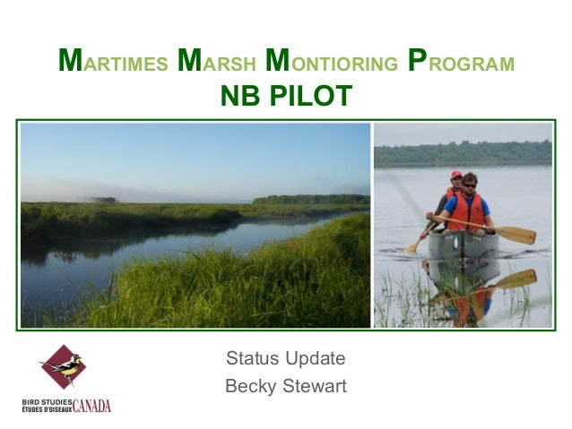 MARTIMES MARSH MONTIORING PROGRAM NB PILOT  Status Update Becky Stewart