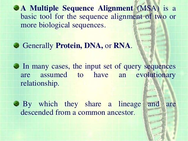 multiple sequence alignment tools
