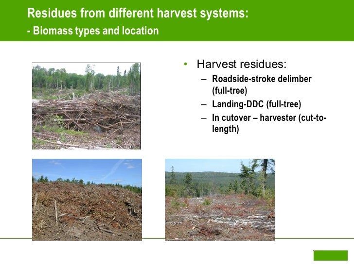 Mark Ryans Opportunities And Challenges In Biomass Harvesting