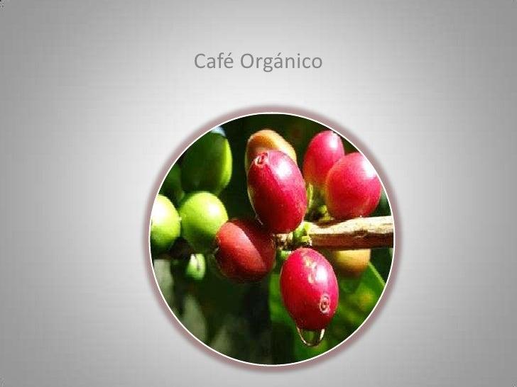 Café Orgánico<br />