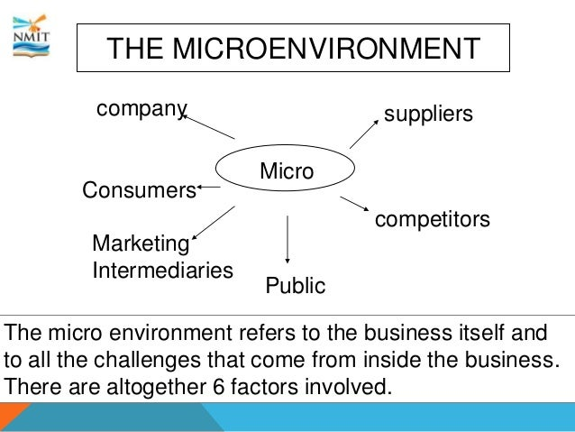 micro environmental factors essay