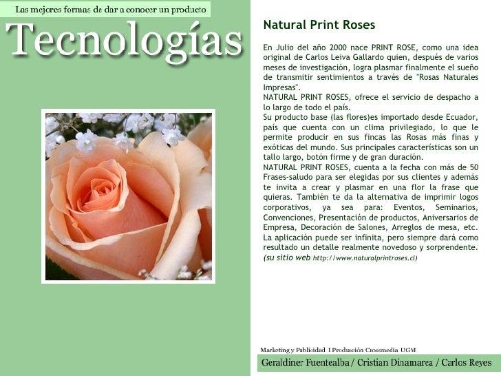 Natural Print Roses   En Julio del año 2000 nace PRINT ROSE, como una idea original de Carlos Leiva Gallardo quien, despué...