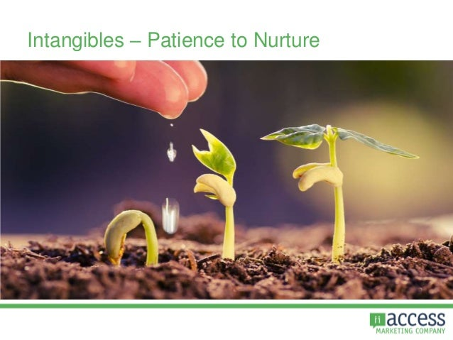 Intangibles – Patience to Nurture