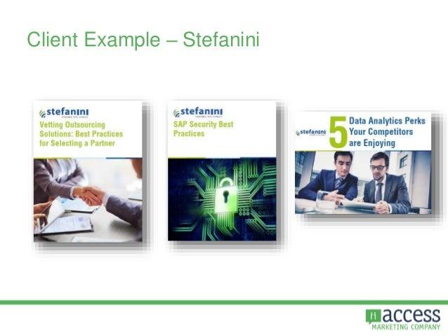 Client Example – Stefanini