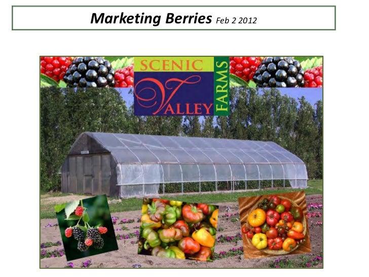 Marketing Berries Feb 2 2012