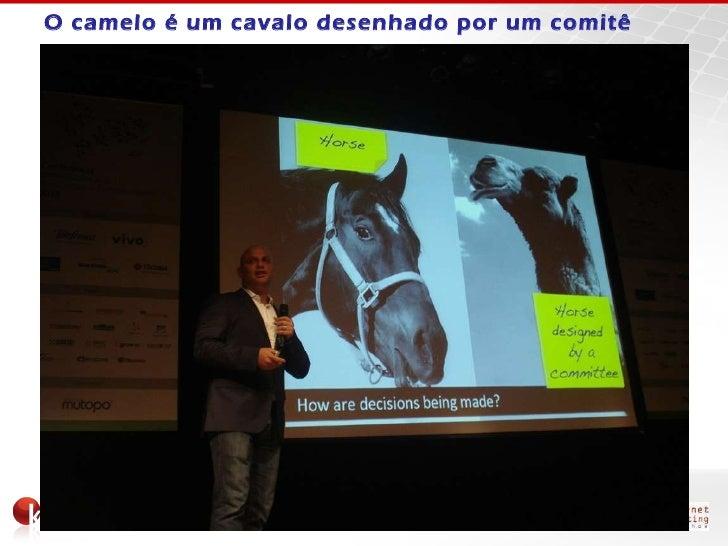 41352e348 O camelo é um cavalo desenhado por um comitê ...