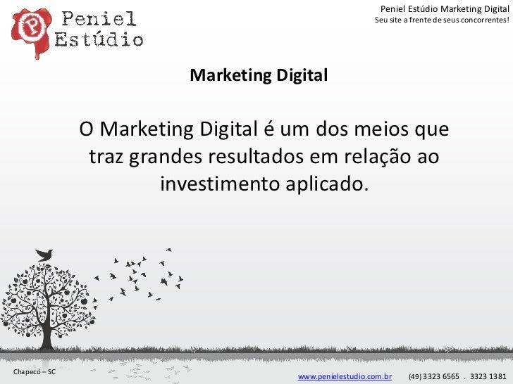Peniel Estúdio Marketing Digital                                                          Seu site a frente de seus concor...