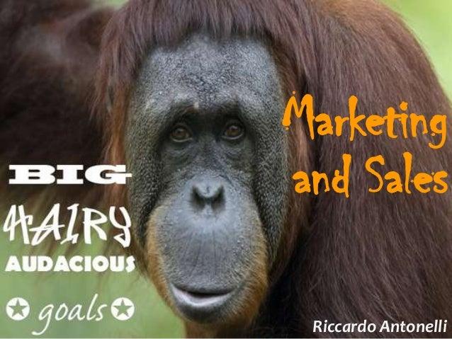 Marketingand Sales Riccardo Antonelli