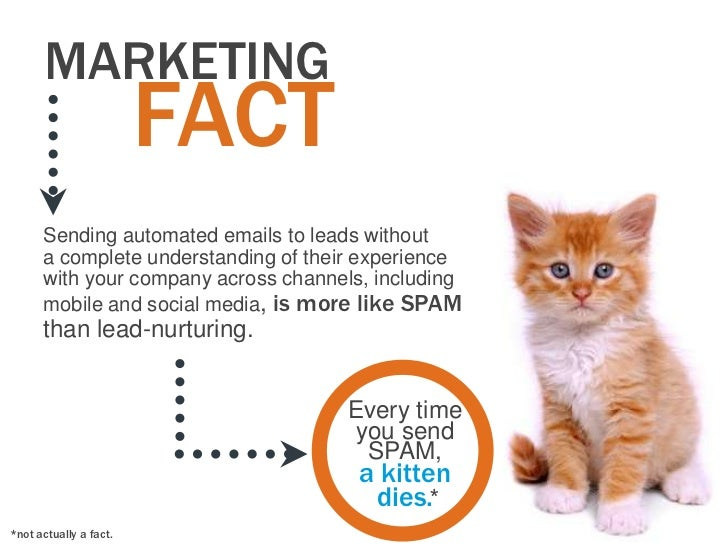 MARKETING                        FACT      Sending automated emails to leads without      a complete understanding of thei...