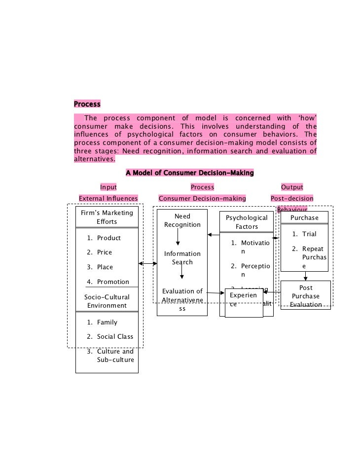 Process    The process component of model is concerned with 'how'consumer make decisions. This involves understanding of t...