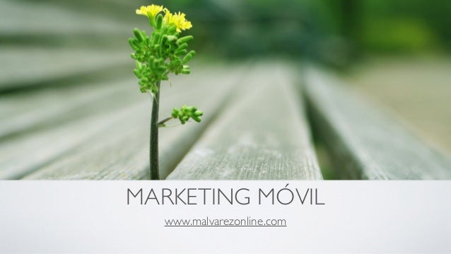 MARKETING MÓVIL www.malvarezonline.com