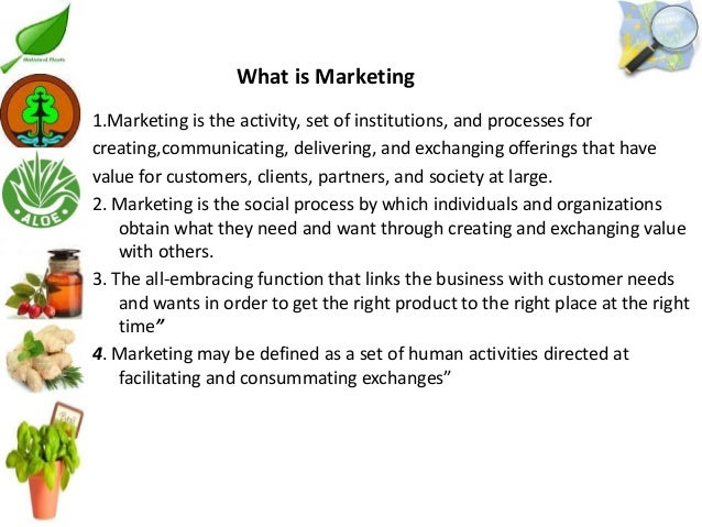 Barriers to implementing a marketing plan Essay