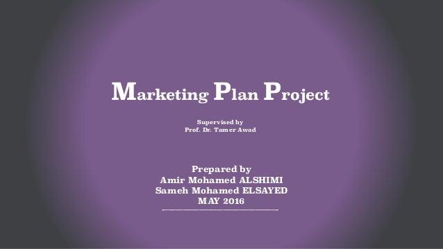 Mba Marketing Project Pdf