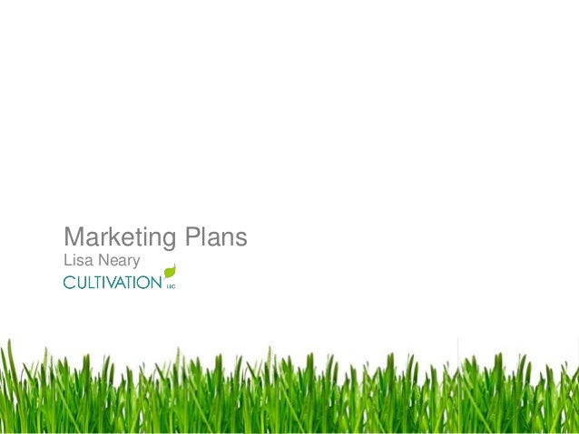 Why Marketing Plans are Important to growth