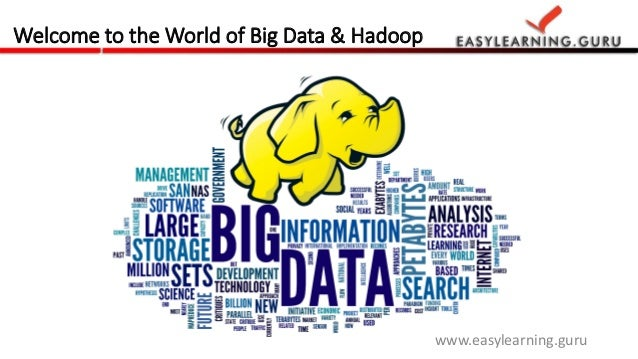 Big Data Hadoop Training By Easylearning Guru. Quality Assurance Resumes. Sports Resume Format. Sample Resume For High School Students With No Work Experience. Resume For Job Application Example. Career Objectives Sample For Resume. Cabin Crew Resume Sample With No Experience. Actors Resume Samples. Valet Attendant Resume