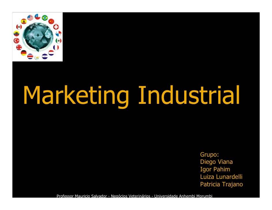 Marketing Industrial                                                                                Grupo:                ...