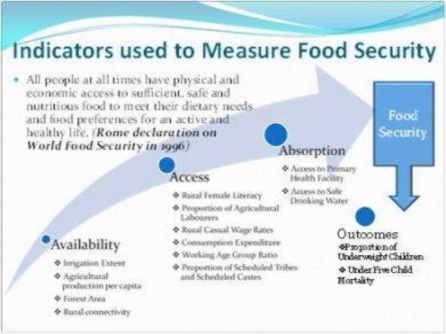 food security policy in india